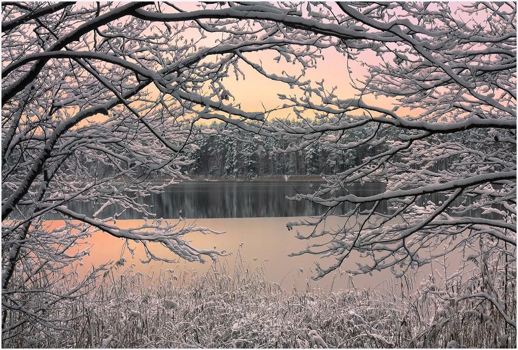 @дневники — Остаемся зимовать