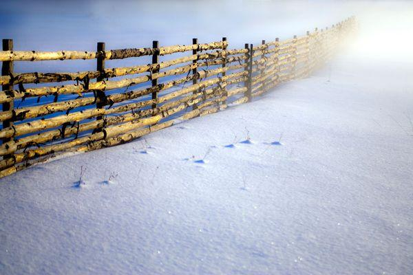 Your Snow Photos -- National Geographic