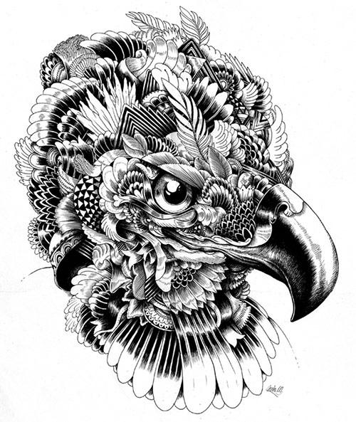 Incredibly Detailed Animal Illustrations - My Modern Metropolis