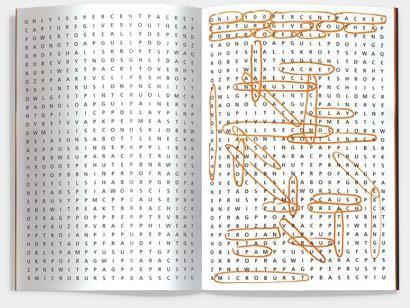 endace-book-wordsearch.jpg (410×308)