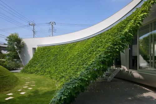 Green Screen House   Leibal