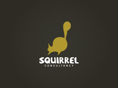 Squirrel Consultancy by Felix Diaconu