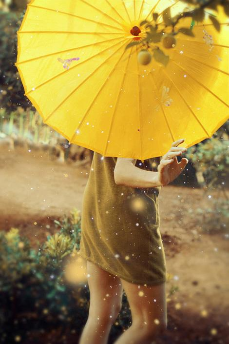 Yellow parasol | iainclaridge.net