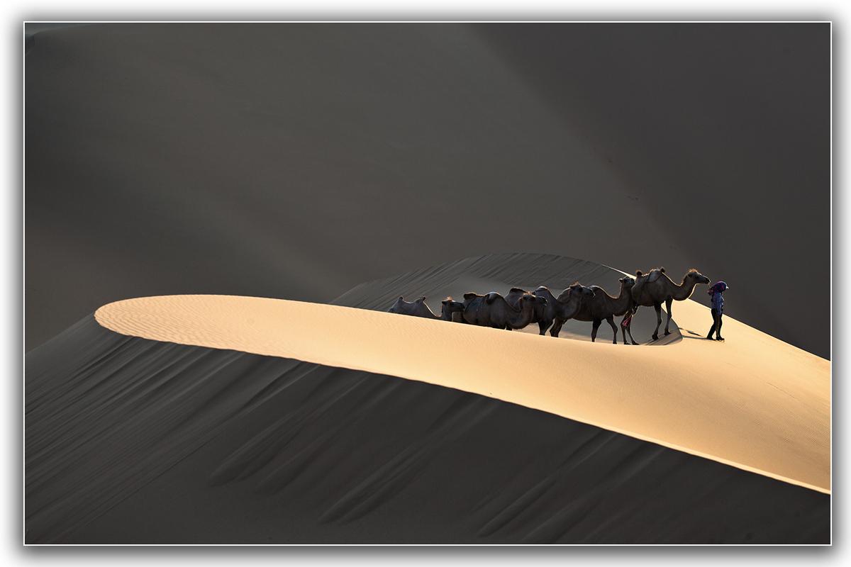 네이버 포토갤러리 :: 온 세상을 전시한다 > 기종 > 사막의 빛