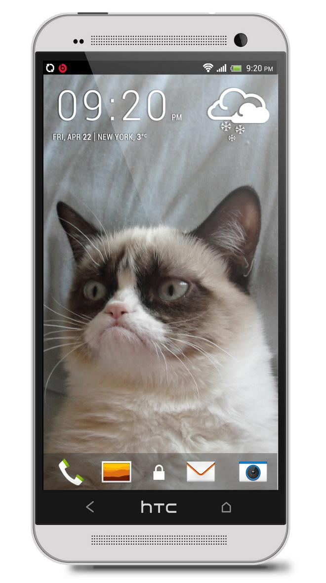 Grumpy cat HTC hd wallpaper - HD wallpapers and backgrounds for HTC