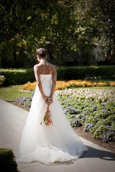 | Wedding Dresses