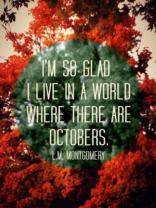#budgettravel #travel #foliage #fall #autumn ...   Fall into Foliage