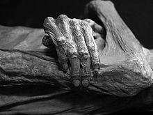 Death - Wikipedia, the free encyclopedia