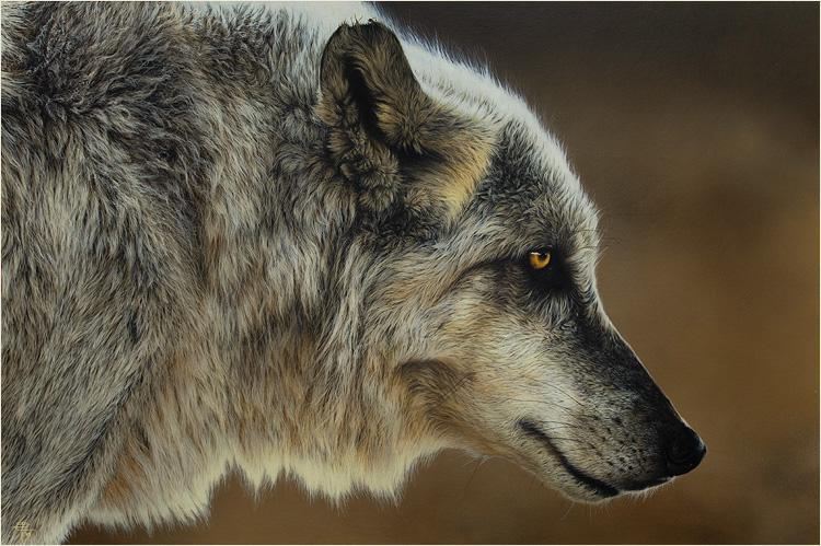 WildVisions - The Wildlife Art of Cristina Penescu