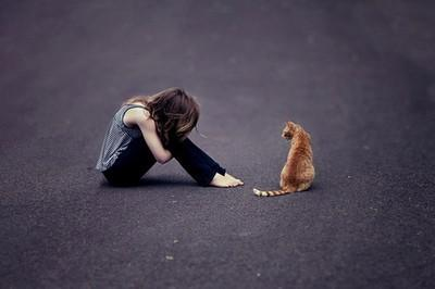 alone, cat, girl, sad - inspiring picture