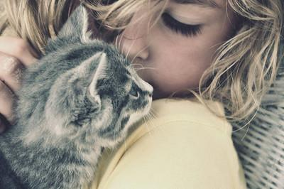 adorable, blond, cat, cute, kitty - inspiring picture