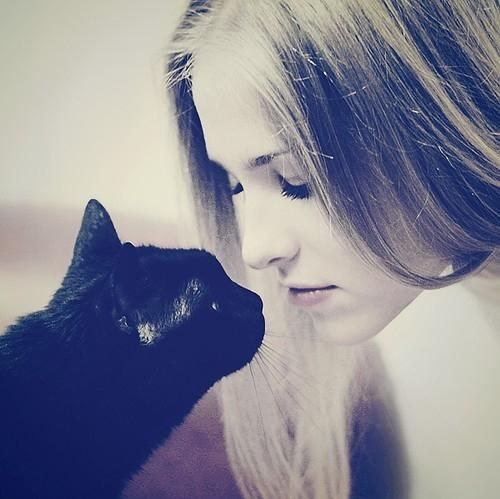 animal, beautifull, beauty, cat, face, girl - inspiring picture