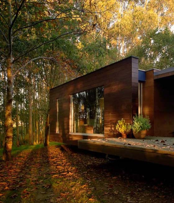Home In Forest Forest House Designs Wooden Home Designs Wooden House In Forest .
