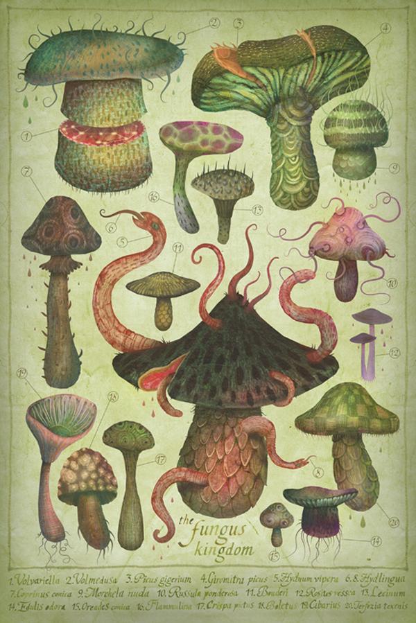 LooksLikeGoodDesignLooks like good Illustrations by Vladimir Stankovic