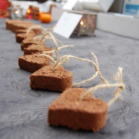 Germinaissances fait entrer des graines de vie dans notre quotidien - Abonéobio : Le blog du bio