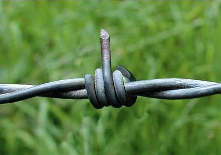 16 Hilarious Fence Fails - Oddee.com