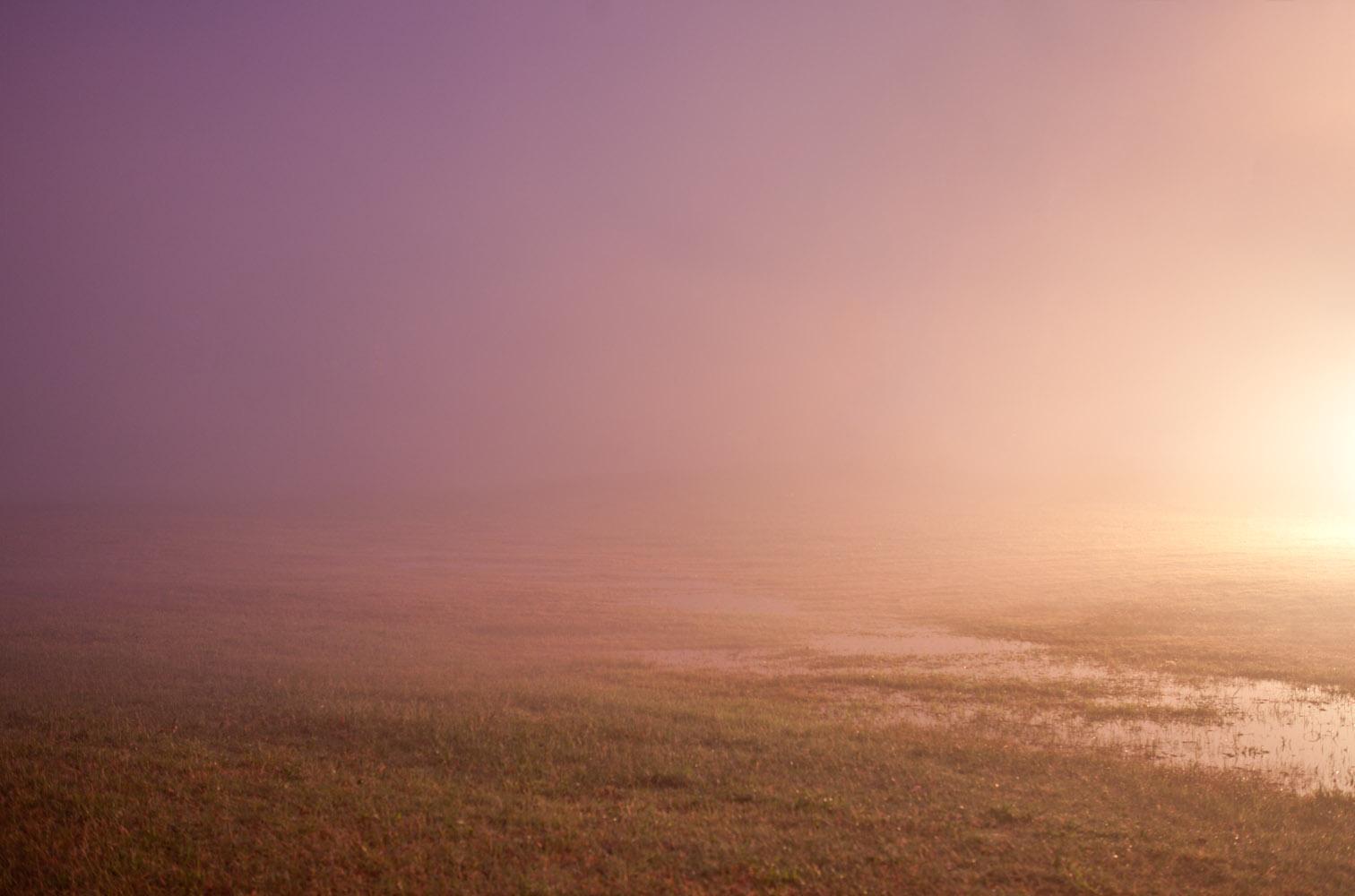 Wesley Stringer :: Landscape - Book 2