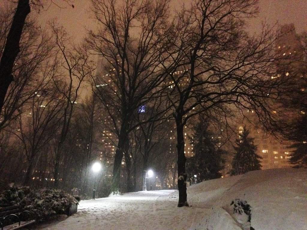 Amazing Photos of an Empty Central Park in a Snowstorm