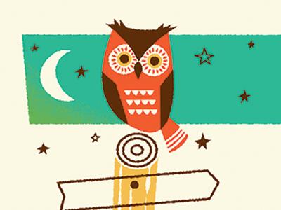 Owl by Brad Woodard