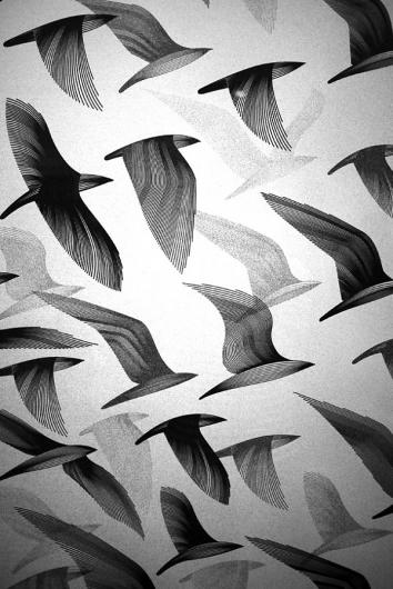 Designspiration — bird-2-600x898.jpg (600×898)