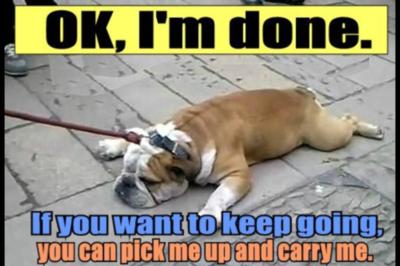 366148_wookmark chronic illness memes 366148 on wookmark