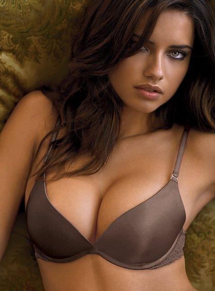 Google Image Result for http://everydayfacts.files.wordpress.com/2009/04/victorias-secret-very-sexy-miracle-bra.jpg%3Fw%3D450