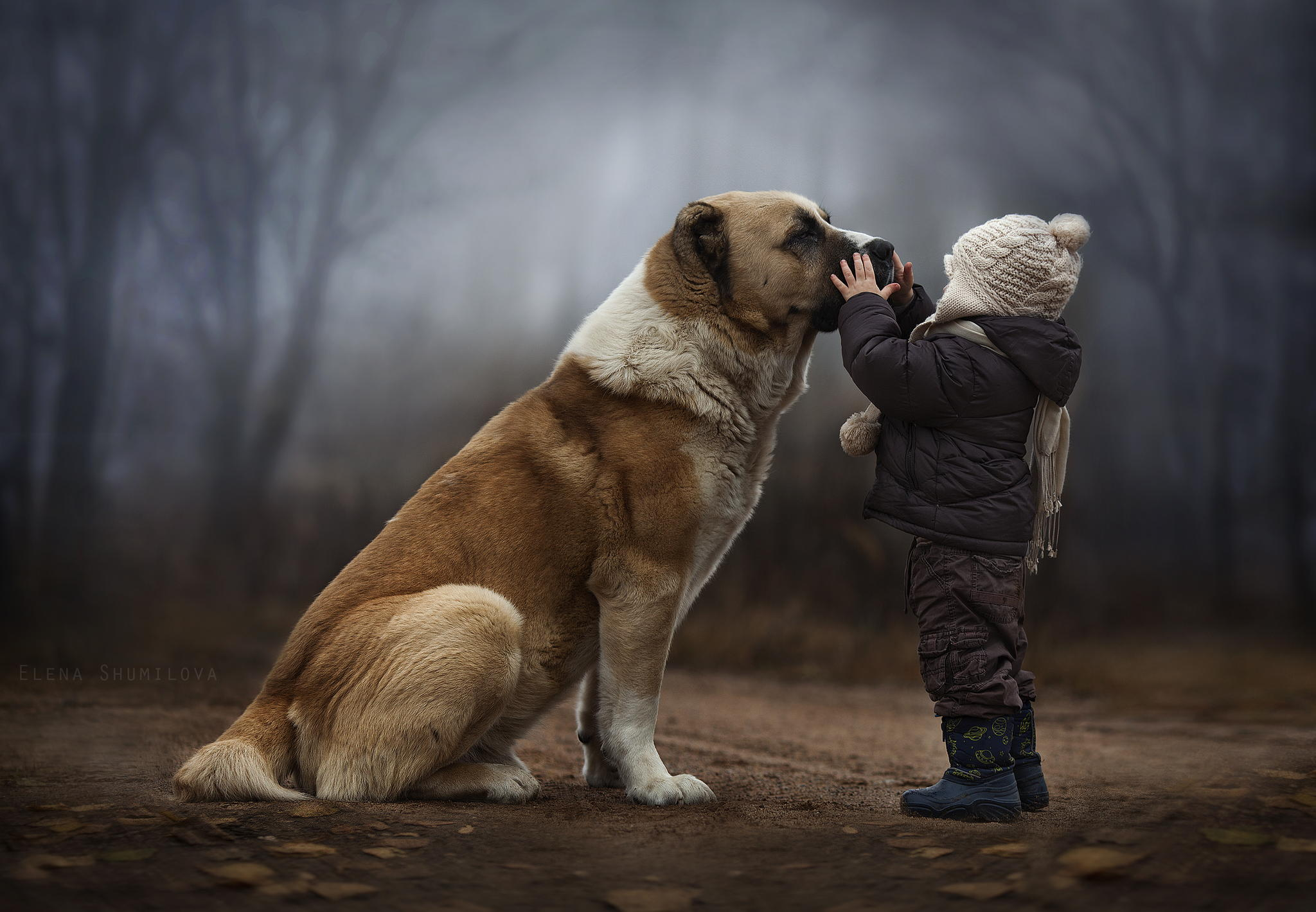 Elena Shumilova — photography @ ShockBlast