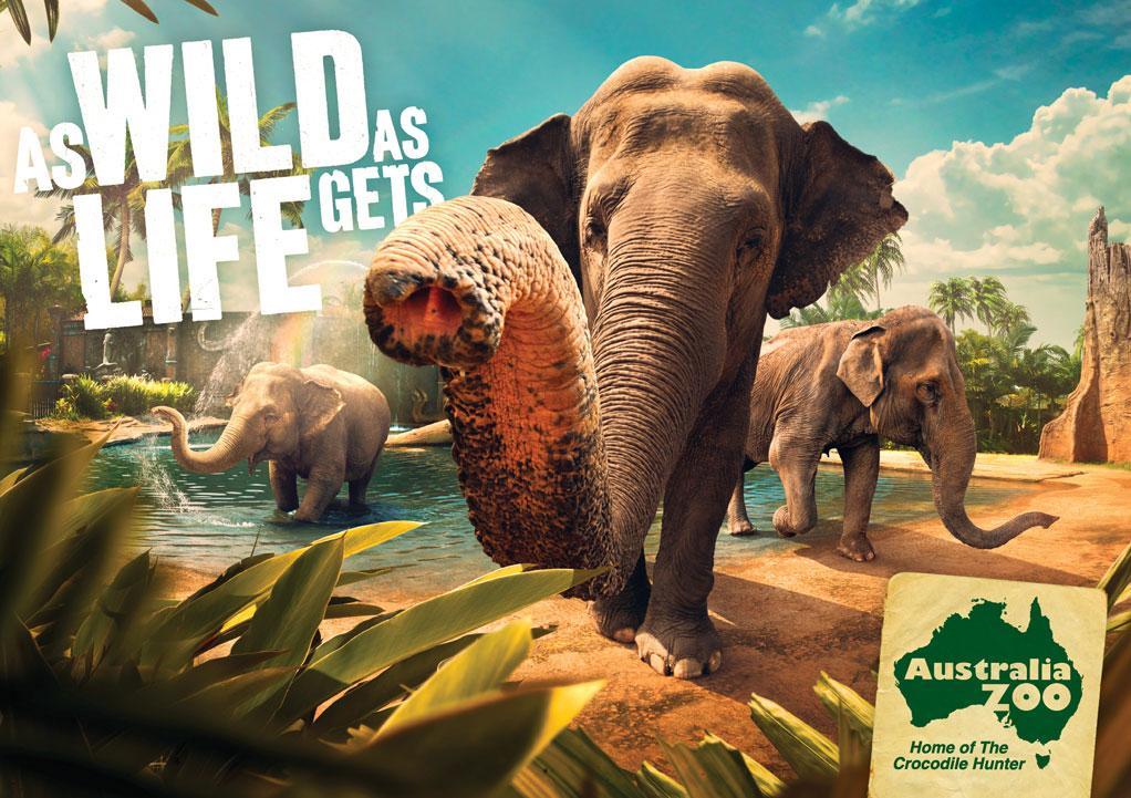Australia Zoo: Elephants | Ads of the World™