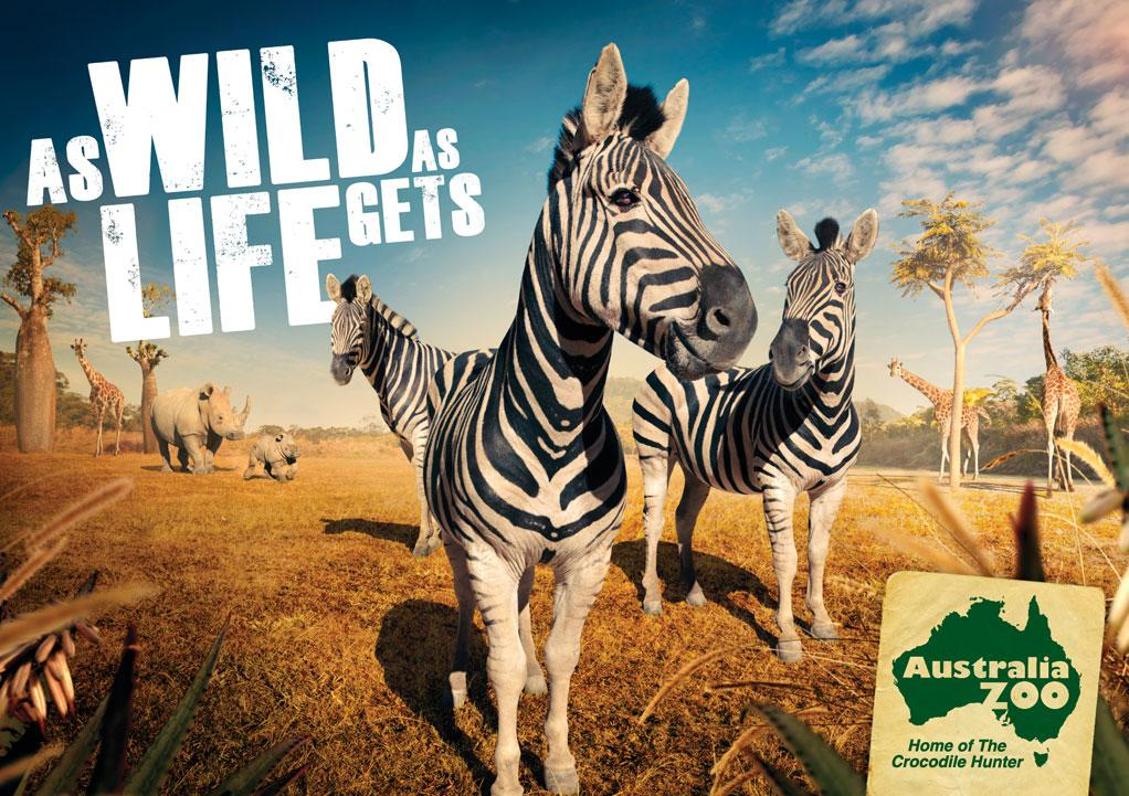 Australia Zoo: Zebra | Ads of the World™
