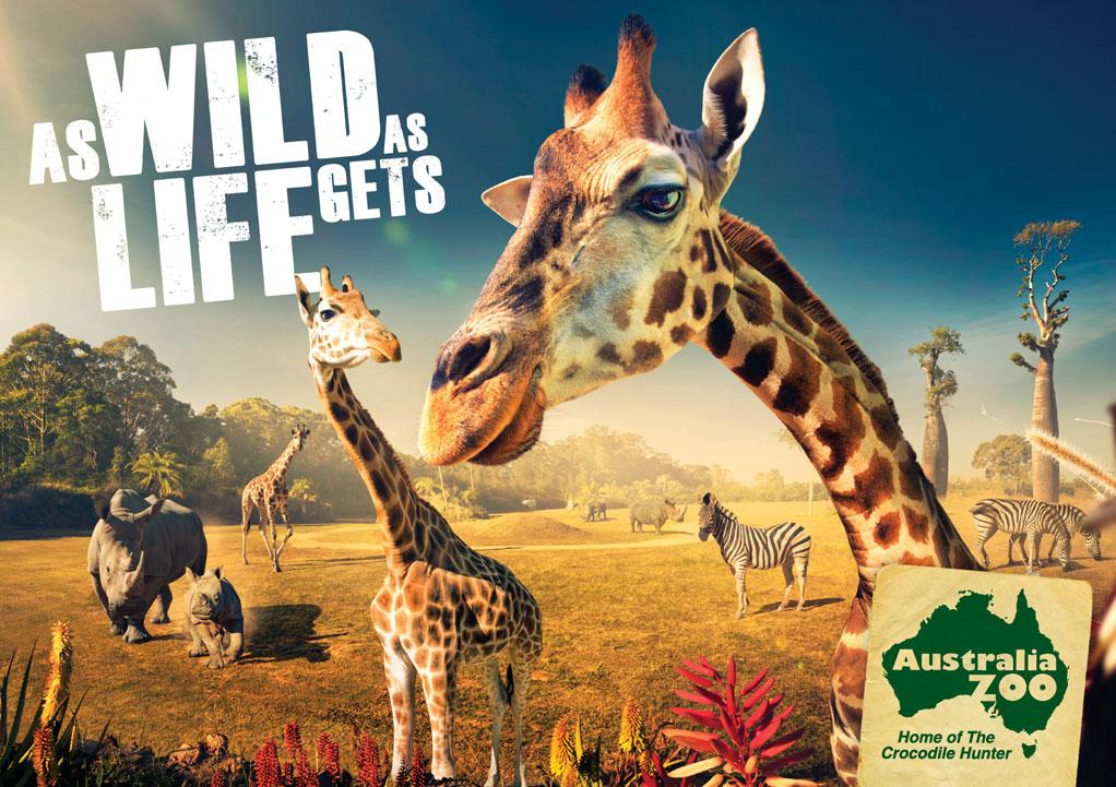 Australia Zoo: Giraffes | Ads of the World™