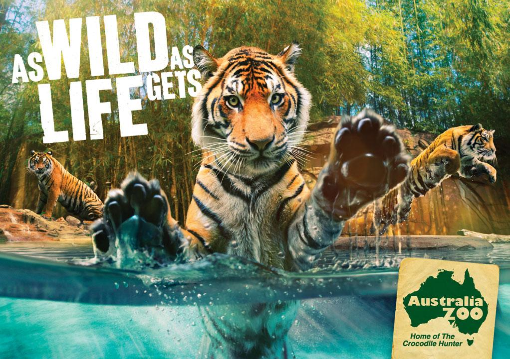 Australia Zoo: Tiger | Ads of the World™