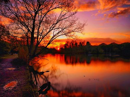 Lake at sunset - Lakes Wallpaper 965884 - Desktop Nexus Nature