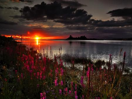 It's almost night - Sunsets Wallpaper 965867 - Desktop Nexus Nature