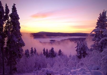 Winter Sunset - Winter Wallpaper 965714 - Desktop Nexus Nature