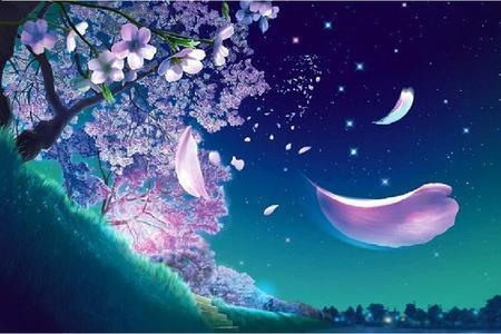 Sakura tree - Other Wallpaper 967692 - Desktop Nexus Nature