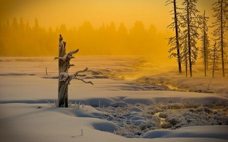 Speechless - Winter Wallpaper 967676 - Desktop Nexus Nature