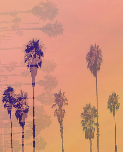 Santa Monica Palms Art Print by Nina May | Society6