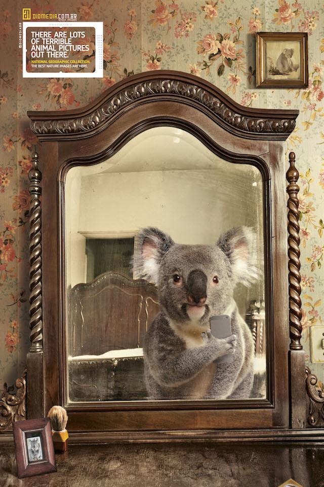 Selfie by National Geographic – Fubiz™