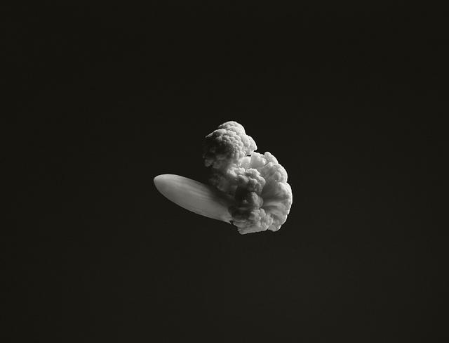 Cauliflower Hindenburg, 1937   Flickr - Photo Sharing!