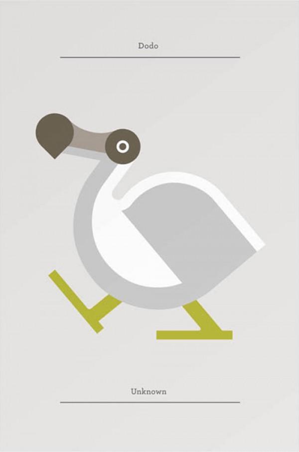 Flora Fauna | Bird Collection | bumbumbum
