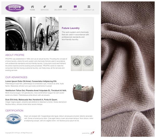 PROPRE Laundry Website