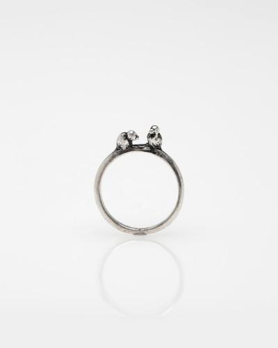 Tiny Birds Ring