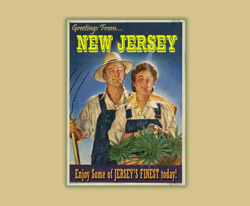 new-jersey-medical-marijuana.jpg (JPEG Image, 850 × 700 pixels) - Scaled (77%)