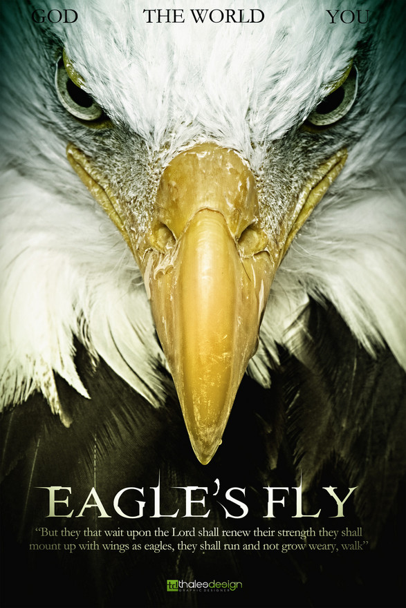Poster Eagle Fly by thalesdesign | Shadowness