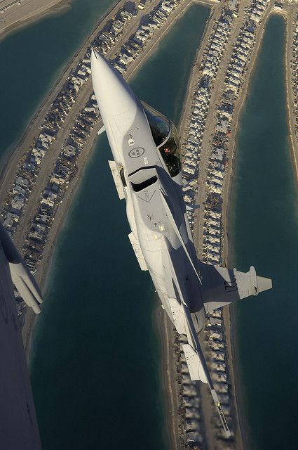 Gripen in Dubai | air | Pinterest