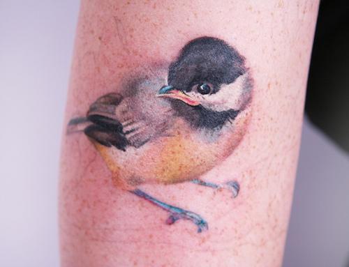 Amanda Wachob Tattoo   Flickr - Photo Sharing!