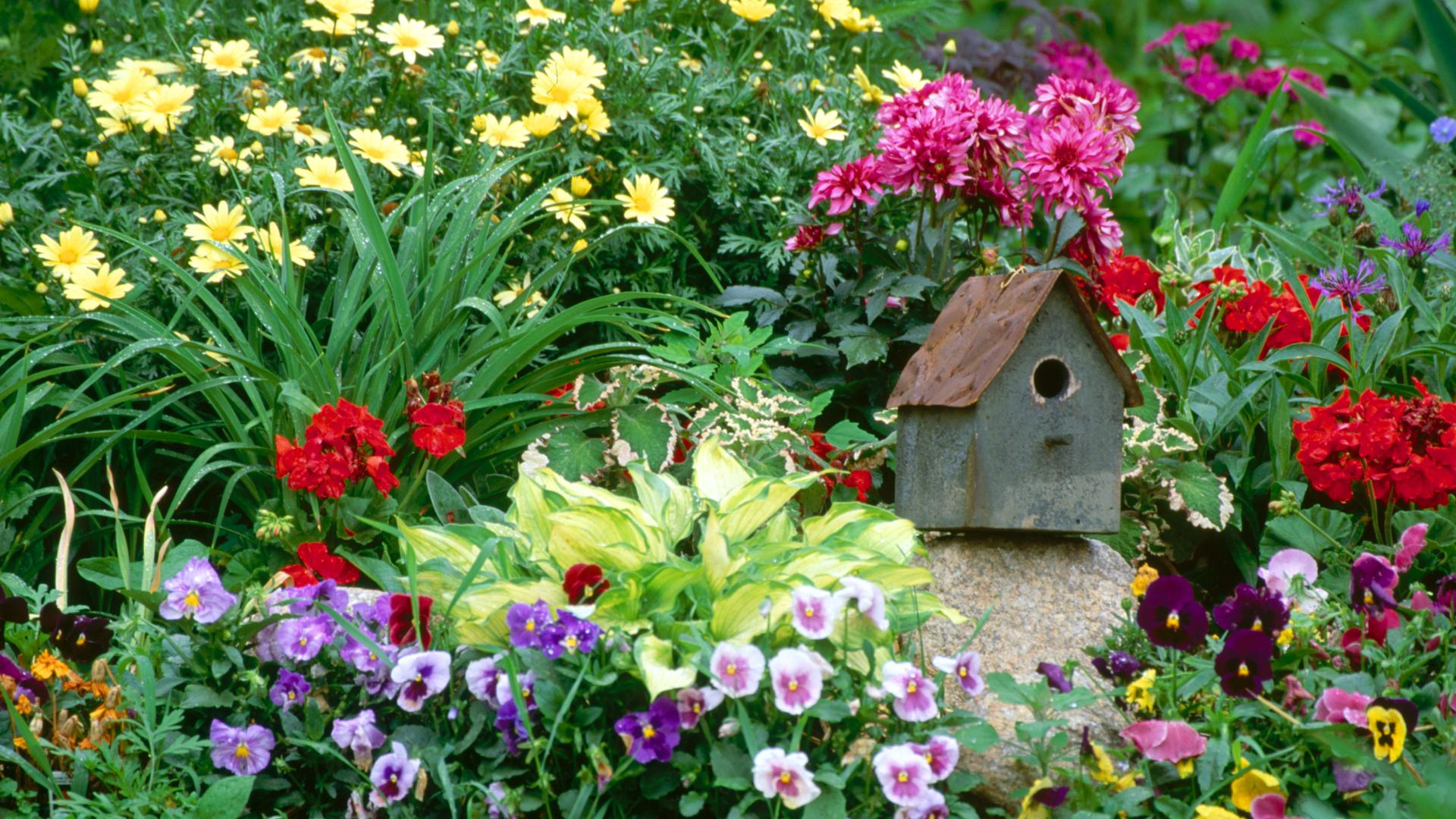 Home Flower Garden - Photography Wallpapers