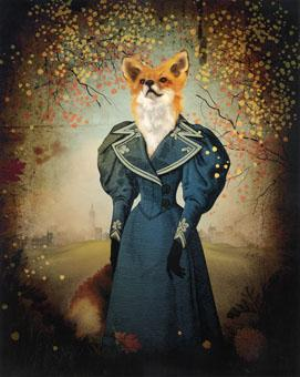 fox.jpg 271×340 pixels