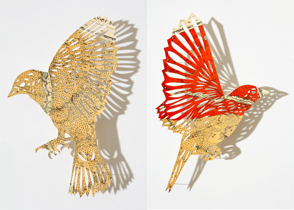 Cartographic Birds and Plants by Claire Brewster | Colossal