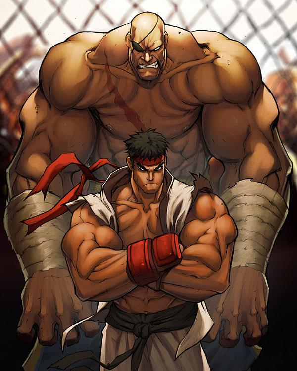 Absolutely Stunning Street Fighter Artwork #3 | nenuno creative
